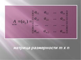 матрица размерности m x n