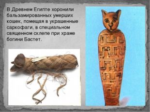 В Древнем Египте хоронили бальзамированных умерших кошек, помещая в украшенны