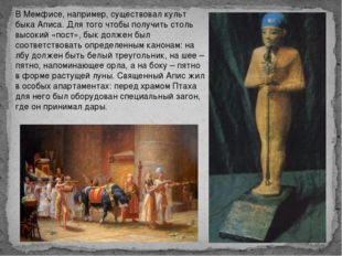 В Мемфисе, например, существовал культ быка Аписа. Для того чтобы получить с
