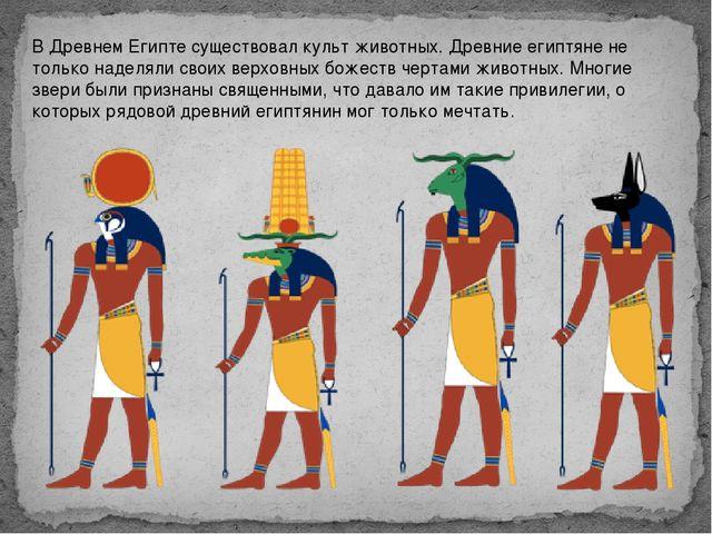 В Древнем Египте существовал культ животных. Древние египтяне не только надел...