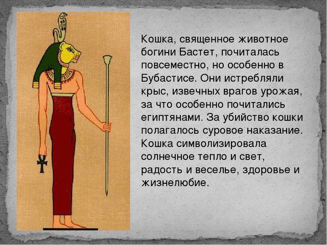 Кошка, священное животное богини Бастет, почиталась повсеместно, но особенно...