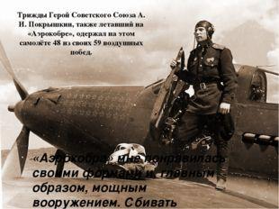 Трижды Герой Советского СоюзаА. И. Покрышкин, также летавший на «Аэрокобре»,