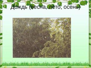 Дождь (весна, лето, осень)