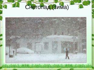 Снегопад (зима)