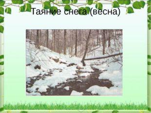 Таяние снега (весна)