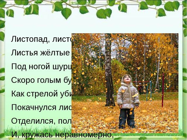 Листопад, листопад, Листья жёлтые летят, Под ногой шуршат, шуршат, Скоро гол...