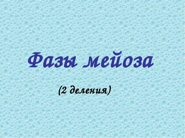 Фазы мейоза (2 деления)