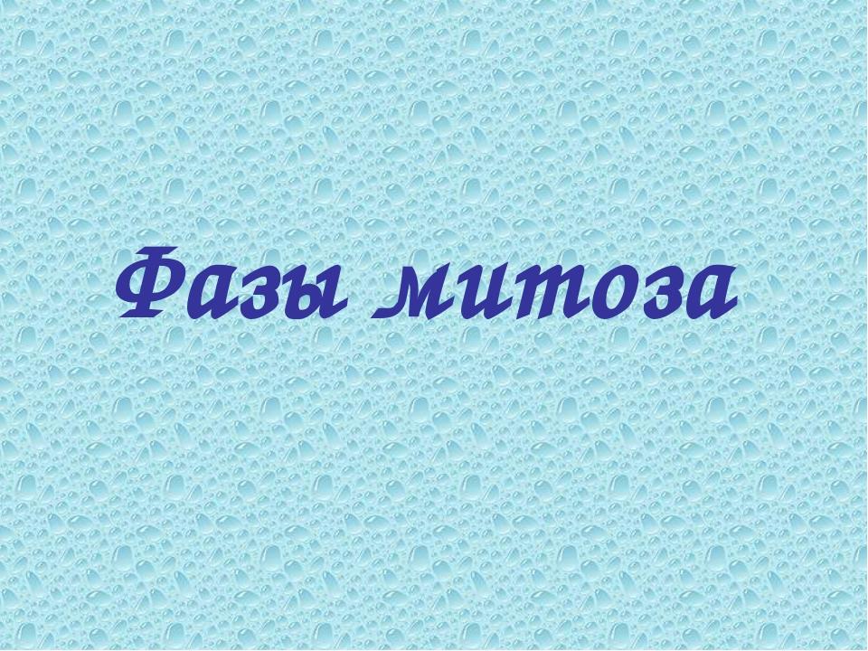 Фазы митоза