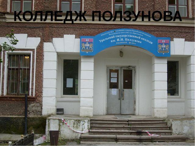 КОЛЛЕДЖ ПОЛЗУНОВА