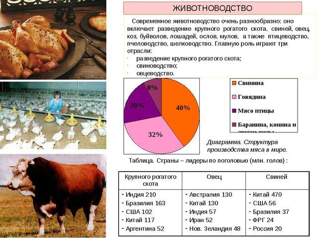 ЖИВОТНОВОДСТВО Современное животноводство очень разнообразно: оно включает ра...