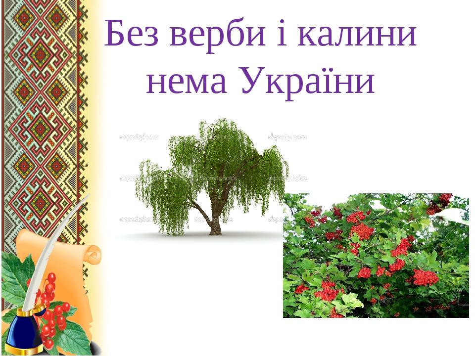 Без верби і калини нема України .