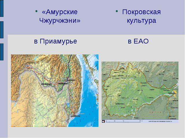 «Амурские Чжурчжэни» в Приамурье Покровская культура в ЕАО