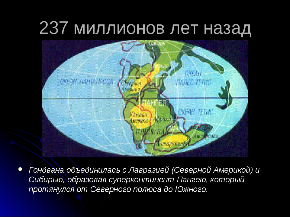237 миллионов лет назад Гондвана объединилась с Лавразией (Северной Америкой)...