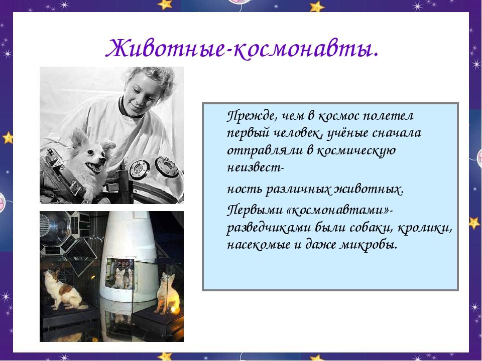 Животные-космонавты. Прежде, чем в космос полетел первый человек, учёные сна...