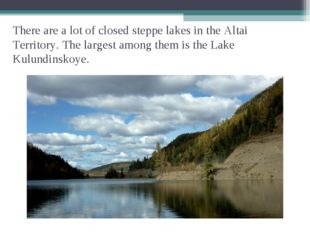 There are a lot of closed steppe lakes in the Altai Territory. The largest am