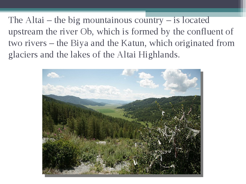 The Altai – the big mountainous country – is located upstream the river Ob, w...