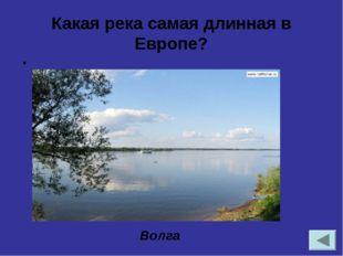 Определите природную зону по описанию. Самая крупная по площади в России. Он