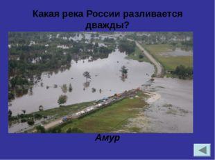 В каких климатических поясах расположена Россия?