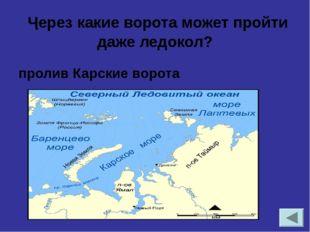 Назовите самый северный заповедник России.