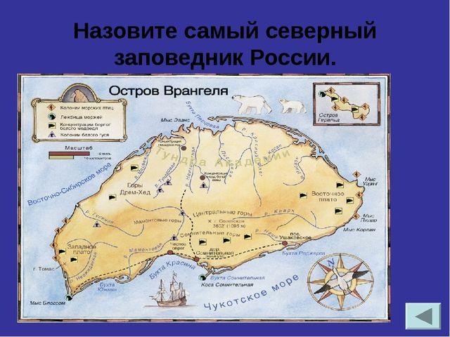 Назовите самые высокие горы России и их вершину. Кавказ. Эльбрус 5642м.