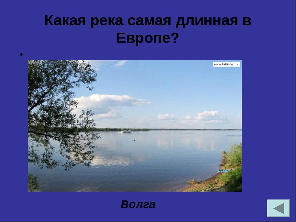 Определите природную зону по описанию. Самая крупная по площади в России. Он...