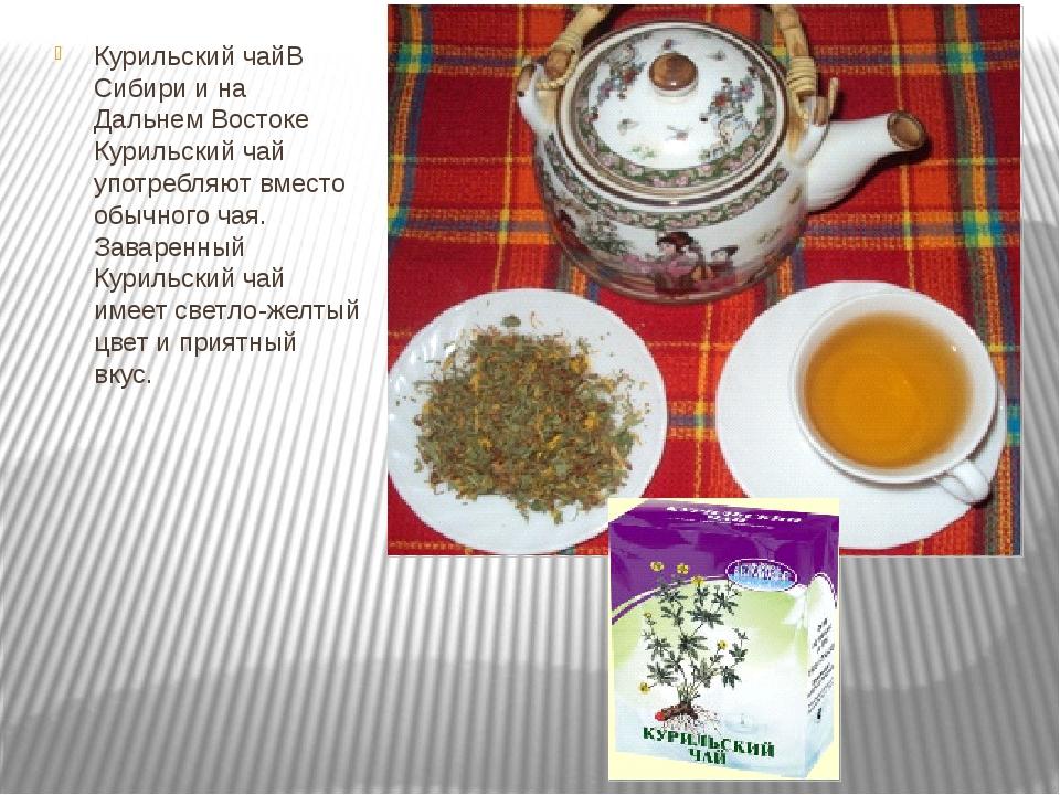 Курильский чайВ Сибири и на Дальнем Востоке Курильский чай употребляют вмест...