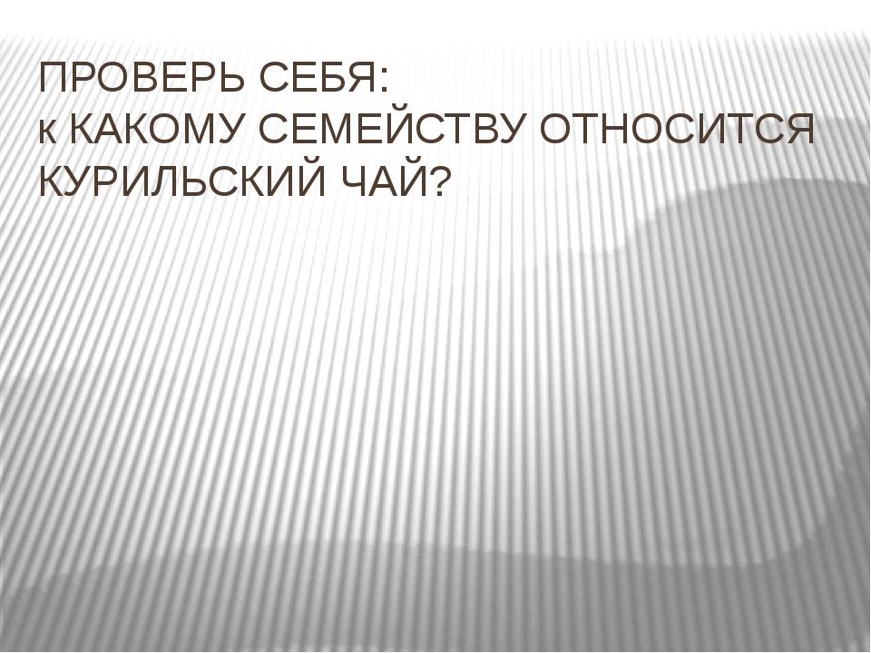 ПРОВЕРЬ СЕБЯ: к КАКОМУ СЕМЕЙСТВУ ОТНОСИТСЯ КУРИЛЬСКИЙ ЧАЙ?