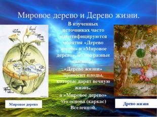 Мировое дерево и Дерево жизни. В изученных источниках часто идентифицируются