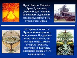 Древо Бодхи - Мировое Древо буддистов. Дерево Бодхи - один из важнейших будди