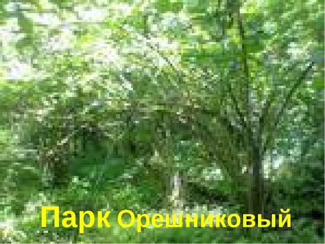 Парк Орешниковый