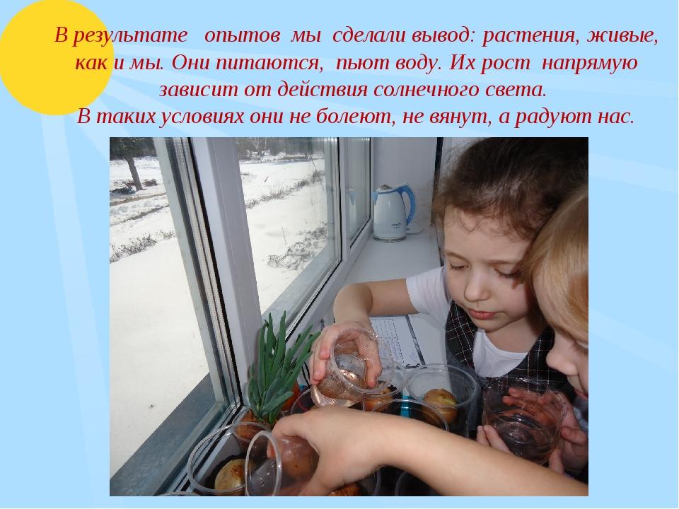 В результате опытов мы сделали вывод: растения, живые, как и мы. Они питаются...