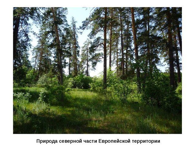 Природа северной части Европейской территории