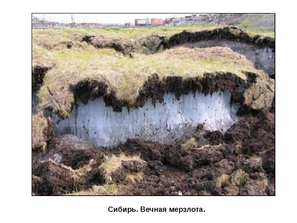 Сибирь. Вечная мерзлота.