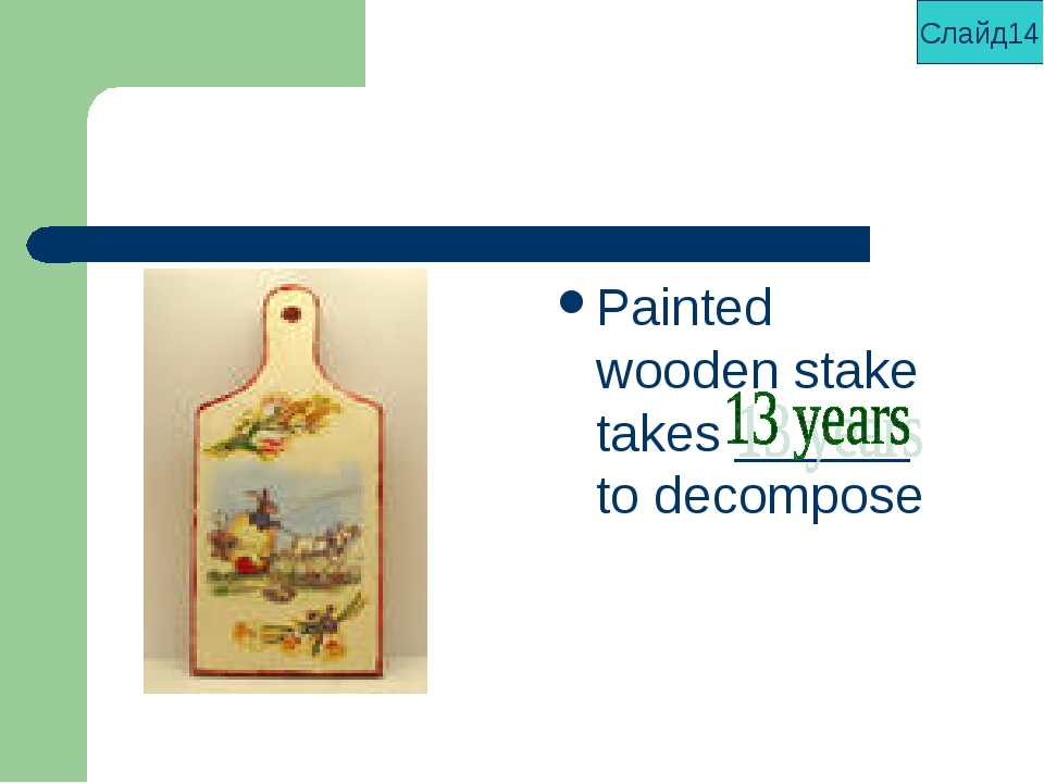 Painted wooden stake takes ______ to decompose Слайд14