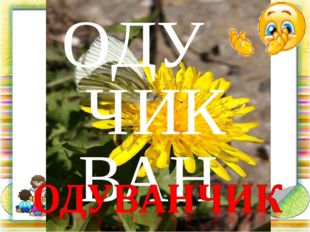ОДУ ЧИК ВАН