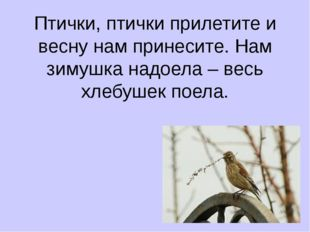 Птички, птички прилетите и весну нам принесите. Нам зимушка надоела – весь хл