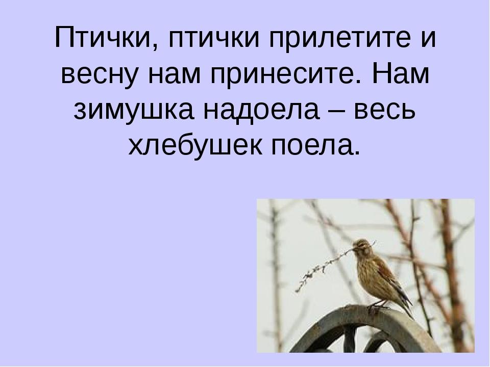 Птички, птички прилетите и весну нам принесите. Нам зимушка надоела – весь хл...