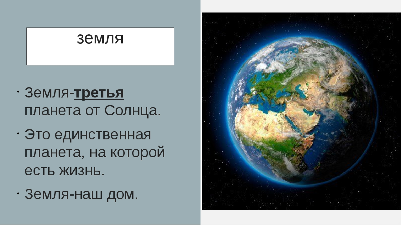 земля Земля-третья планета от Солнца. Это единственная планета, на которой ес...