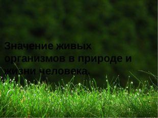 Значение живых организмов в природе и жизни человека.
