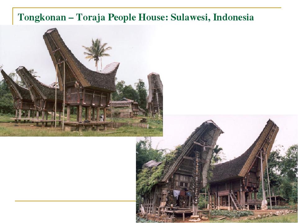 Tongkonan – Toraja People House: Sulawesi, Indonesia