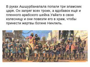 В руках Ашшурбанапала попали три эламских царя. Он запряг всех троих, а вдоба