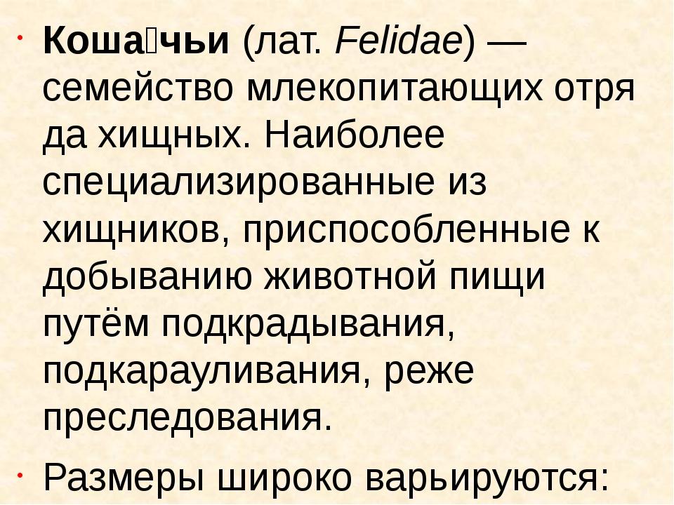 Коша́чьи(лат.Felidae)— семействомлекопитающихотрядахищных. Наиболее спе...