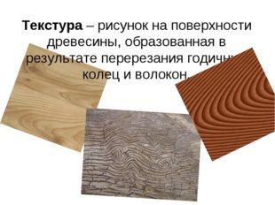 Текстура – рисунок на поверхности древесины, образованная в результате перере