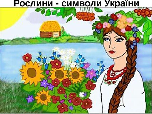 Рослини - символи України