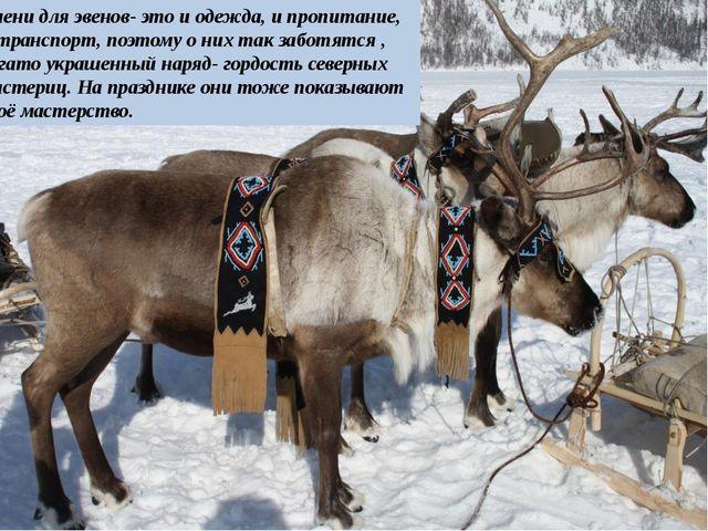 Олени для эвенов- это и одежда, и пропитание, и транспорт, поэтому о них так...