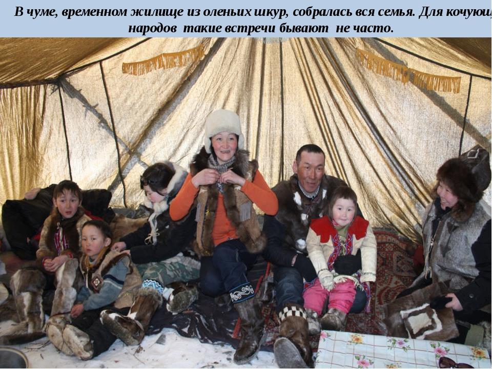 В чуме, временном жилище из оленьих шкур, собралась вся семья. Для кочующих н...
