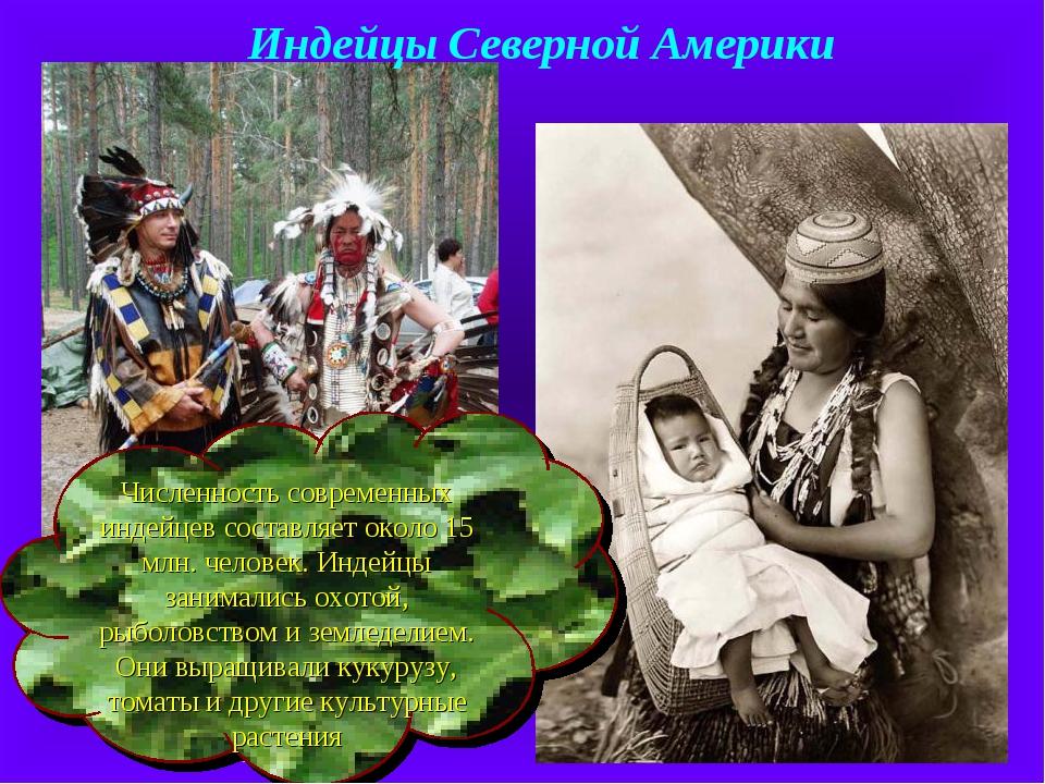 Численность современных индейцев составляет около 15 млн. человек. Индейцы за...