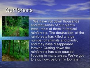 Our forests We have cut down thousands and thousands of our plant's trees, mo