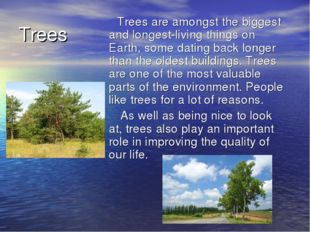 Trees Trees are amongst the biggest and longest-living things on Earth, some