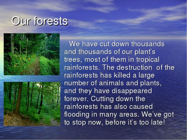 Our forests We have cut down thousands and thousands of our plant's trees, mo...